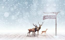 Deer arriving at the north pole Royalty Free Stock Photo