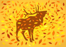 Deer at autumnal Stock Image