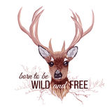Deer and bare branches vector design object. Wild and Free sloga. N. Typographic design artwork. All elements are isolated and editable Royalty Free Stock Images
