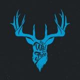 Deer be wild and free invert blue. Deer be wild and free blue invert, hand drawn lettering vintage illustration Stock Image
