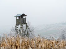 Deer blind. Wooden deer blind in the middle of the corn field Royalty Free Stock Photo