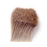 Deer body hair Stock Photo