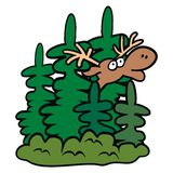 Deer in the bushes Stock Image