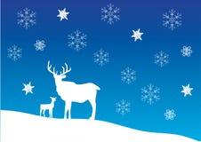 Deer card Royalty Free Stock Photo