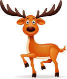 Deer cartoon Royalty Free Stock Photography