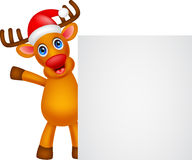 Deer cartoon Christmas with blank sign Royalty Free Stock Photos