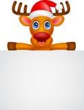 Deer cartoon Christmas with blank sign Stock Photos