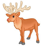 Deer cartoon illustration Royalty Free Stock Photos