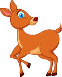 Deer cartoon Stock Images