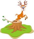 Deer cartoon posing on tree stump Royalty Free Stock Photo