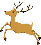 Deer cartoon running Royalty Free Stock Photos