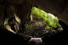 Deer cave in gunung mulu national park. View from inside deer cave in gunung mulu national park Royalty Free Stock Images