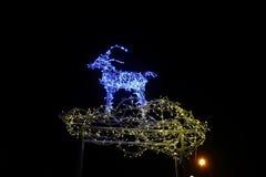 Deer Christmas lights Royalty Free Stock Photo