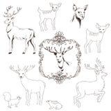 Deer Christmas Set Stock Images