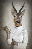 Deer in clothes. Concept graphic in vintage style. Deer in clothes. Concept graphic in vintage style Royalty Free Stock Photos