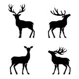 Deer collection - vector silhouette Royalty Free Stock Photo