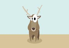 Deer Confusions Stock Photography