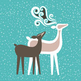 Deer couple Stock Photography