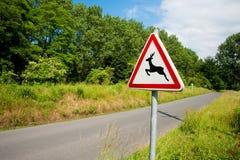 Deer crossing Royalty Free Stock Photos