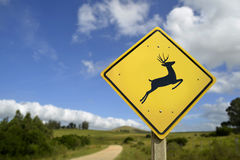 Deer crossing road sign for wildlife conservation Royalty Free Stock Images