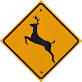 Deer Crossing Sign royalty free stock photo