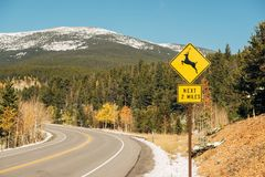 Deer crossing sign on highway at autumn Royalty Free Stock Photo