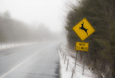 Deer crossing sign on highway Royalty Free Stock Photography