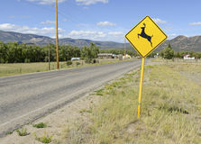 Deer crossing warning sign on empty road Stock Images