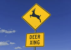 Deer crossing warning sign on empty road Royalty Free Stock Photography