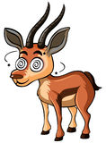 Deer with dizzy face Royalty Free Stock Photo