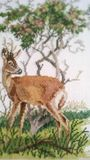 Deer Embroidery Royalty Free Stock Images