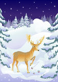 Deer and fairy tale forest Royalty Free Stock Photos