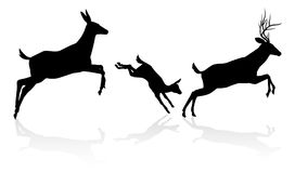 Deer Family Silhouette. Deer animal silhouettes. Fawn, doe and buck stag running and jumping together Royalty Free Stock Image