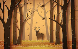 Deer in the forest. Stock Images