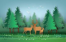 Deer in the forest Stock Photography