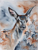 Deer in the forest watercolor art Royalty Free Stock Images