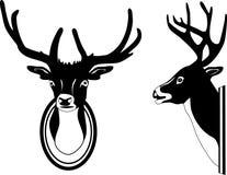 Deer head Royalty Free Stock Image