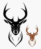 Deer head. Vector illustration of deer head in black and brown color vector illustration