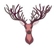 Deer head. Beautiful horns. speaking look Royalty Free Stock Photos