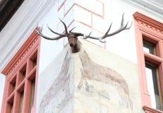 The deer head on the corner Stock Photos