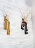Deer head decorative in home interior Stock Image