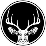 Deer Head Insignia Stock Photo