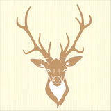 Deer head isolated Royalty Free Stock Photo