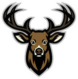 Deer head mascot Stock Photos