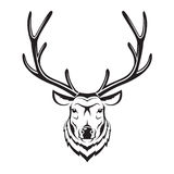 Deer head Royalty Free Stock Image