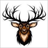 Deer Head. Vector Illustration. Stock Images