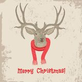 Deer head vintage Christmas card. Deer vintage Christmas card vector animal illustration. Sketch tattoo design Stock Image