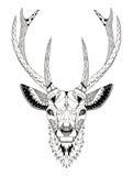 Deer head zentangle stylized Stock Image
