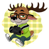 Deer hipster Stock Photo