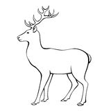 Deer horns animal black white  illustration Royalty Free Stock Photography